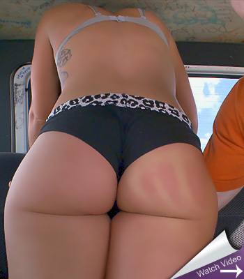 Savannah Fox Bang Bus